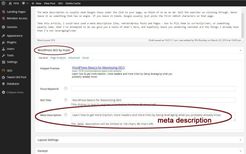 Wordpress SEO plugin meta description field
