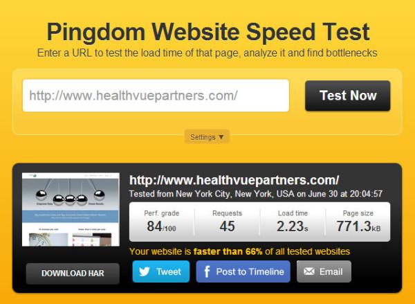 healthvuepartners.com pingdom